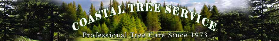 Coastal Tree Service:Tree removal, stump removal, spraying, fertilization and tree planting.